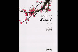 روئیدن دوباره «گل صدبرگ» در بازار نشر