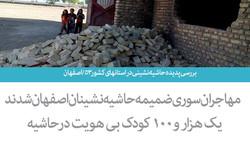 بررسی پدیده حاشیه نشینی در استانهای کشور ۵۳/ اصفهان