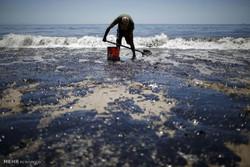 نشت نفت در کالیفرنیای آمریکا