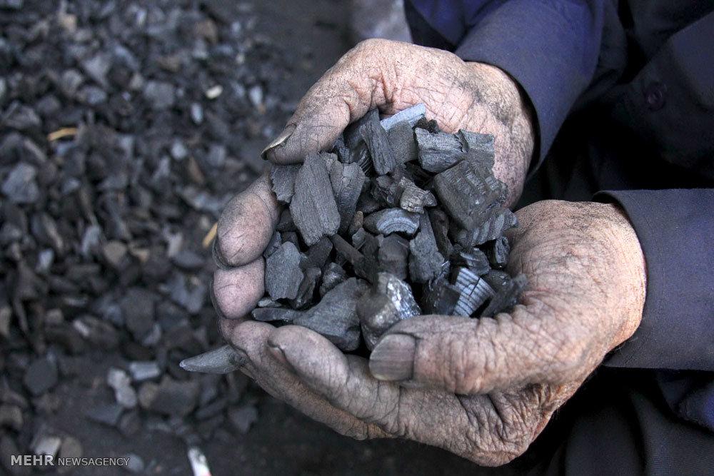 قیمت چوب زغال