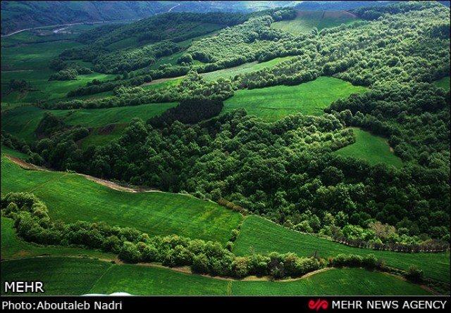 تسجيل غابات شمالي ايران في قائمة التراث العالمي لمنظمة اليونسكو