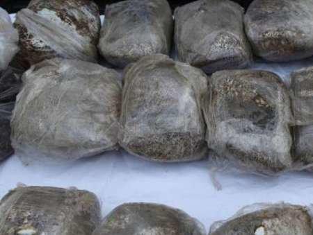 کشف ۶۶ کیلو حشیش و تریاک و دستگیری ۲ سوداگر مرگ