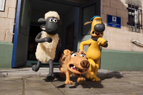 شان گوسفنده