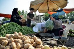 بازار هفتگی در گناوه برپا میشود/ ساماندهی دستفروشان
