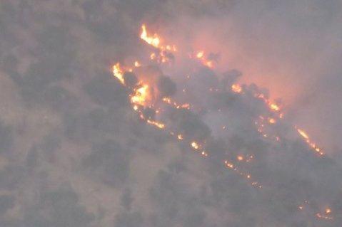 "اندلاع حريق في غابات ""إيلام"" غرب إيران"