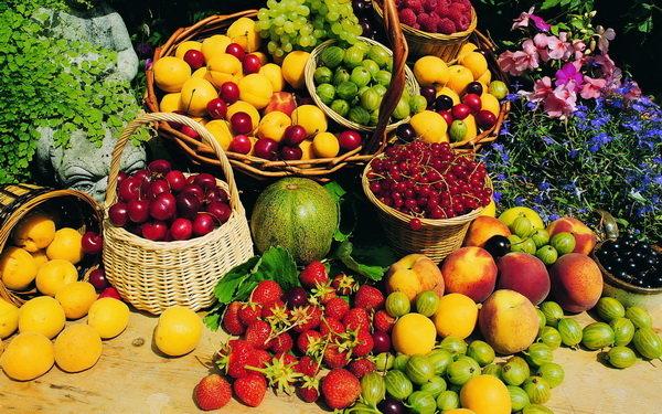 هشدار مجلس به دستگاههای متولی درباره قاچاق میوه