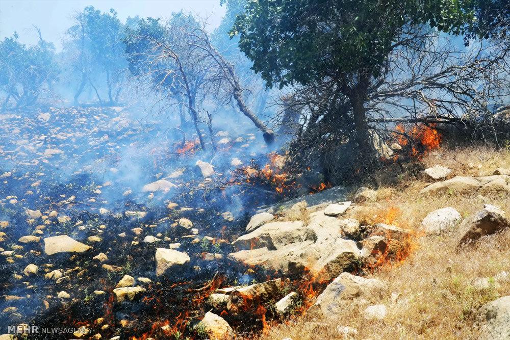 عکس آتش سوزی ایلام