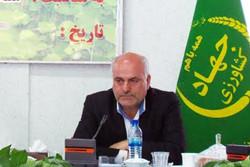 سید حسن میرعماد رئیس سازمان جهاد کشاورزی استان سمنان
