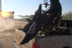 صحيفة اماراتية: الادارة الامريكية غير جادة في مكافحة الإرهاب