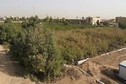 تخریب باغ در قم