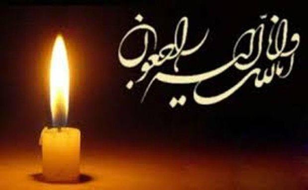 «منصور ملکی» همسر پری ملکی درگذشت