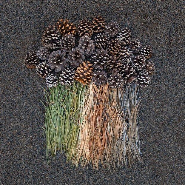 everyday-objects-arrangements-emily-blincoe-17.jpg