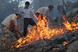 ۱۰ هکتار از جنگلهای کوه خامی طعمه حریق شد