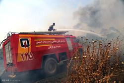 اندلاع حريق في غابات مدينة جرجان شمال ايران
