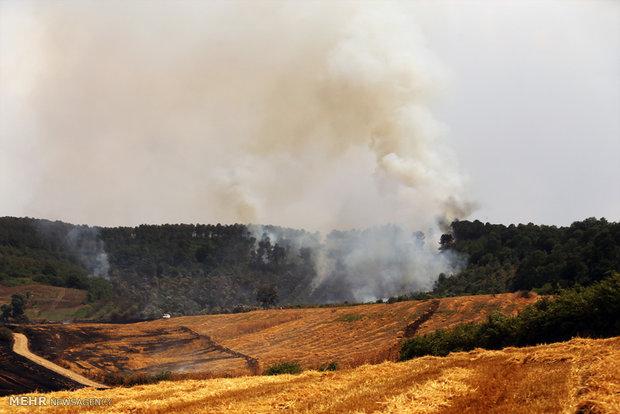 خسارت ۶۰ میلیاردی آتش سوزی مزارع گندم بیله سوار/بررسی علت حادثه