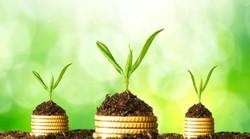 ۱۷۰ طرح پژوهشی کارآفرینی وابسته به جهاد کشاورزی در حال اجرا است