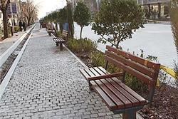 جانمایی ایجاد چند پیاده راه در قلب تهران