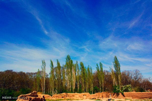 گورستان تاریخی شهر دانسفهان+گزارش تصویری