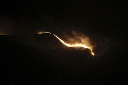 آتش سوزی پارک جنگلی آبیدر کاملا مهار شد
