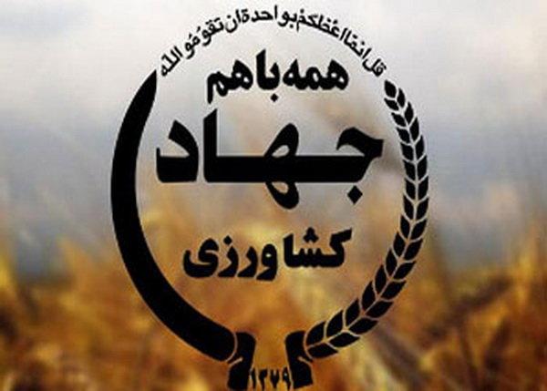 نگاه سیاسی حاکم بر بخش اقتصادی/ کشاورزان کردستانی زیر خط فقرهستند