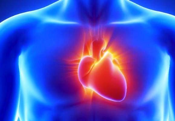 Researchers heal damaged heart tissue via nanotech.