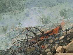 هلی برن نیرو برای مهار کامل آتش سوزی در ارتفاعات منطقه خامی