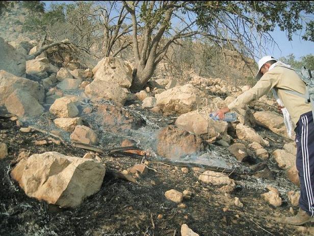 آتش سوزی جنگلهای پلدختر