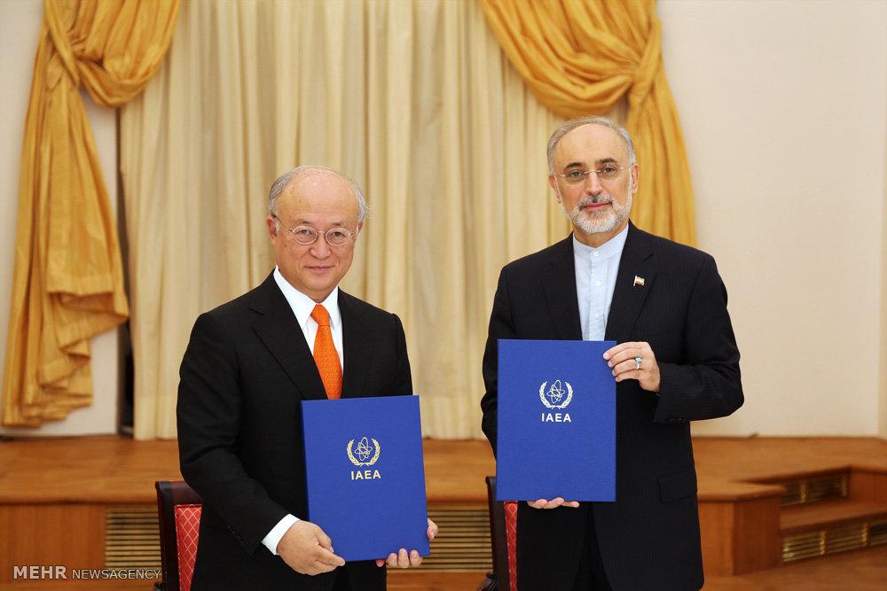 دیدار رئیس سازمان انرژی اتمی ایران و مدیر کل انرژی اتمی