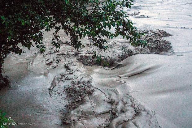 طغیان رودخانه تالار شهرستان سوادکوه