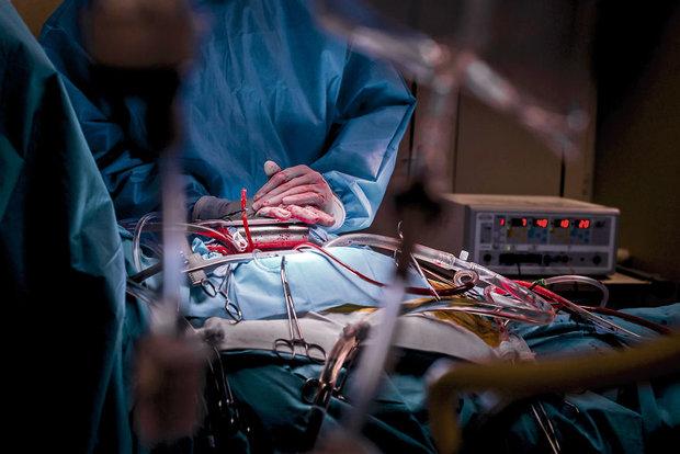 احياء الانسجة القلبية المعطوبة اثر السكتة بوصلة كولاجينية