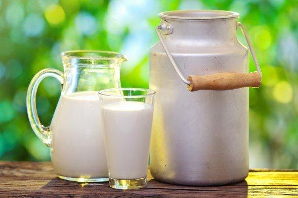 شیر و لبنیات