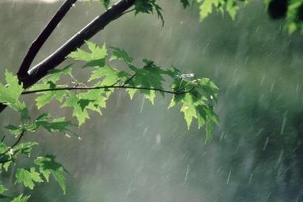 کراپشده - بارش باران