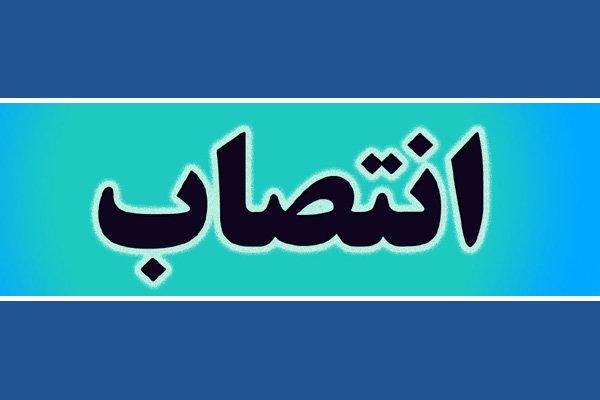 ۸ بخشدار زن در خوزستان منصوب شدند