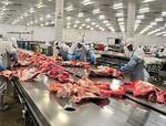 موافقت دولت با واردات گوشت قرمز از روسیه