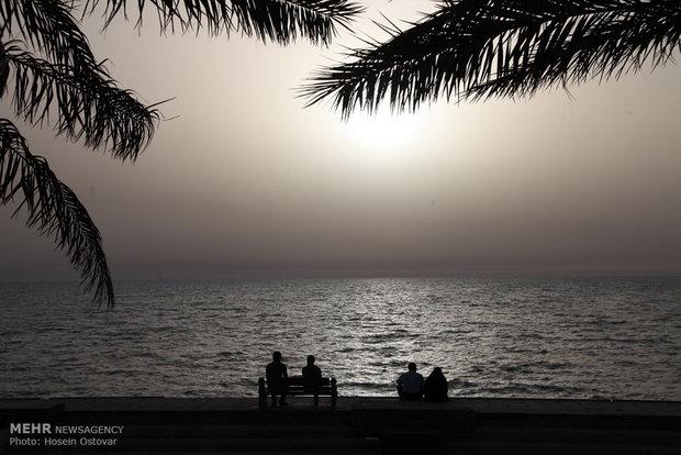 Bushehr Beach