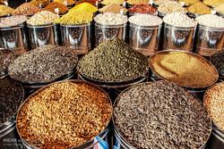 نظارت بر قیمتهای آجیل و خشکبار در استان بوشهر افزایش یافت
