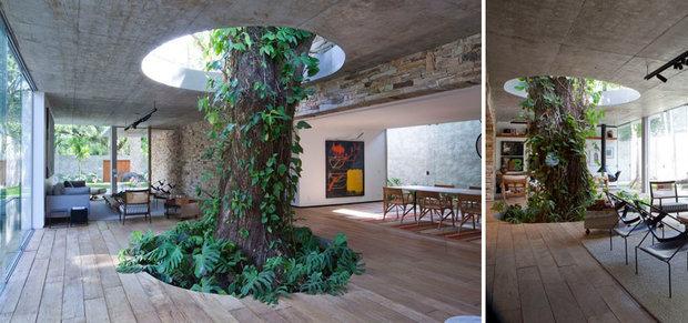 architecture-around-the-trees-4__880.jpg