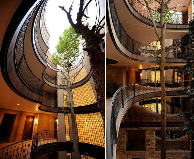 architecture-around-the-trees-10__880.jpg