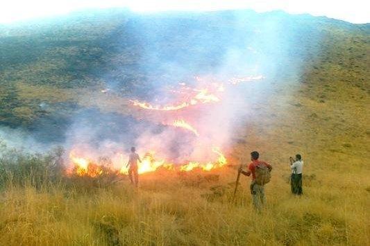 آتش در کمین عرصههای جنگلی شمیرانات است/آماده باش یگان حفاظت