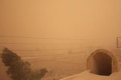 توفان ادارات سیستان را تعطیل کرد/ غلظت غبار ۳۴ برابر حد مجاز شد