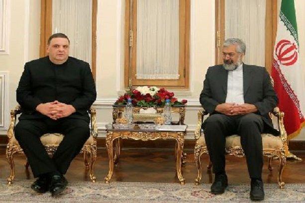 Iran, Georgia can take steps to upgrade ties