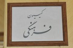 جعفرپور رئیس کمیسیون فرهنگی مجلس شد