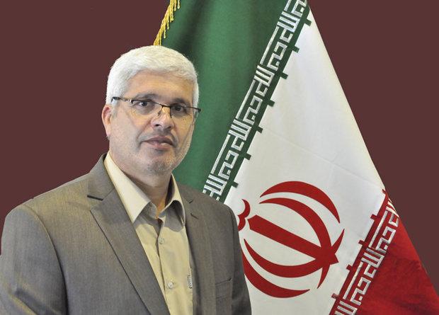 فرماندار تایباد