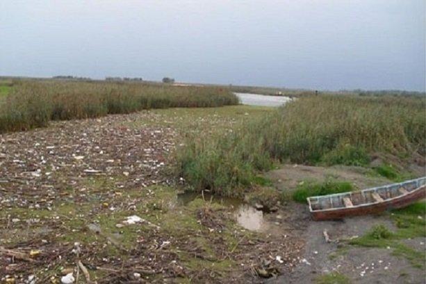 Heavy metal pollution monitored in Anzali Wetland