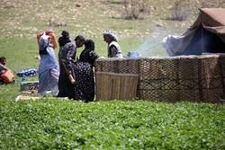 توسعه گردشگری عشایری در استان اردبیل مطالعه میشود