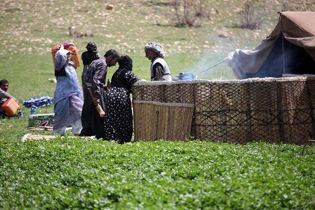 شاخص های توسعه و برخورداری عشایر نسبت به جامعه روستایی پایین است