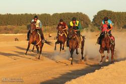 مشگینشهر از دومین مسابقه اسبدوانی «کورس» میزبانی میکند