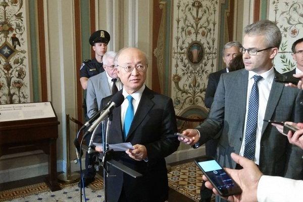 UAEK, İran Nükleer Programı'nı denetlemeye devam edecek