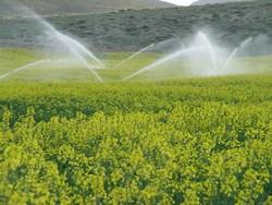 شش پروژه کشاورزی در بم افتتاح می شود