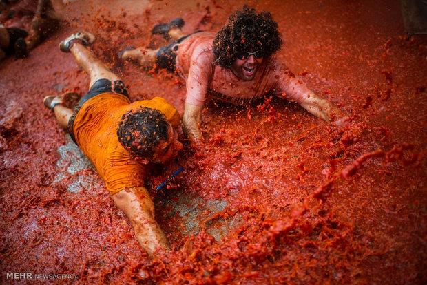 جشنواره توماتینا در اسپانیا